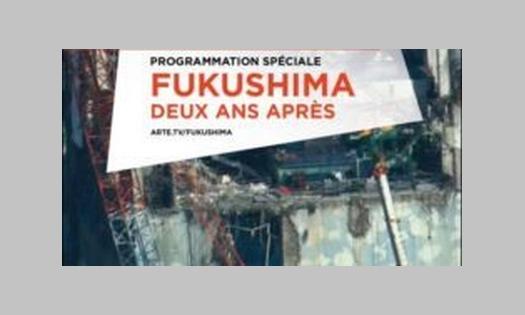 13 novembre 2013 – Soirée RSF à Chêne-Bourg. Le Monde après Fukushima